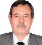 Dr. Mohamed Abdurraouf Elghabrun