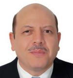 Dr. Mohamed Nasereldin Kassem